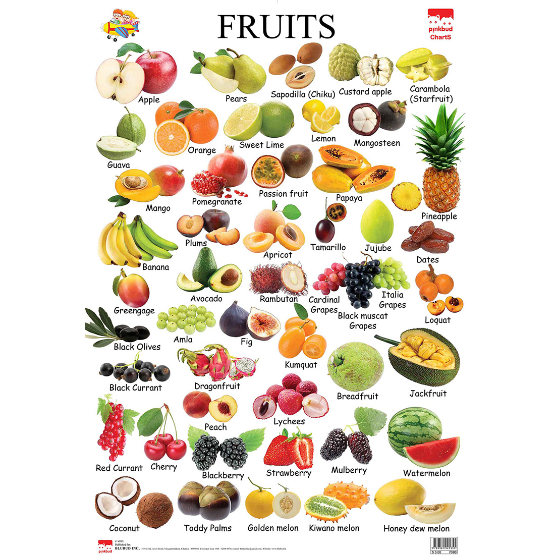 Pinkbud Kids First Learning Educational Chart Fruits For U Kids Retail Pvt Ltd